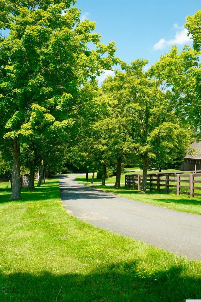 667 County Rt 403 Westerlo, NY 12083